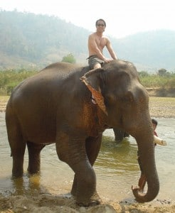 Mike Lin traveling on elephant