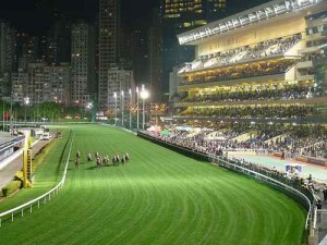 A horse race in the evening time
