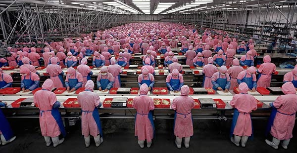 China Manufacturing PMI (caixin) Is 51.0 For October
