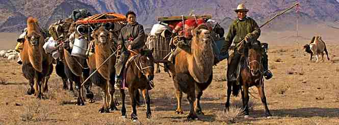 Ancient nomads on camels