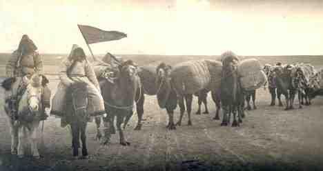 mongolian_nomads-horses3.jpg