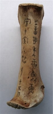 Example of China's oracle bones