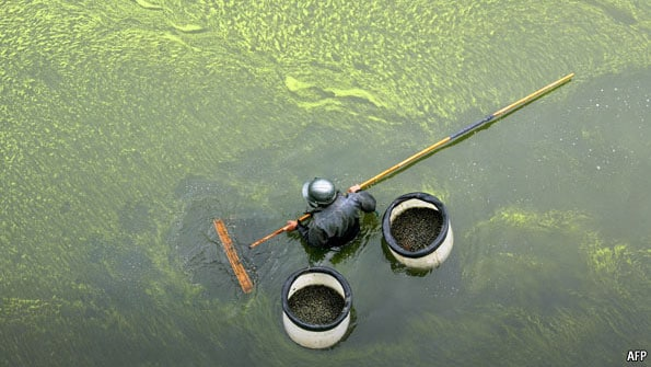 china polluted river worker cleaning China Energy, Pollution, Environment facts & statistics